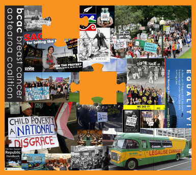 LobbyTorque Jigsaw Graphic - TorquePoint Effective Political Lobbying in New Zealand Experiential Learning Programme